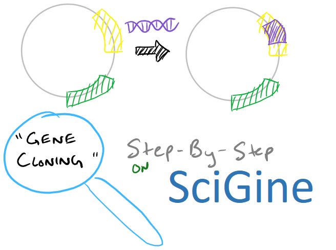Gene Cloning using Plasmids via Molecular Cloning techniques